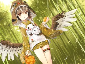 Rating: Safe Score: 71 Tags: ayakashi_kyoushuutan brown_eyes brown_hair cura feathers food forest fruit garter goggles hat hiyo_(ayakashi_kyoushuutan) japanese_clothes kimono loli orange_(fruit) short_hair tree wings User: otaku_emmy