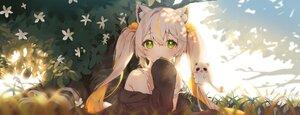 Rating: Safe Score: 70 Tags: animal_ears catgirl cheli_(kso1564) dan_gyuri flowers grass green_eyes long_hair twintails white_hair User: BattlequeenYume