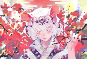 Rating: Safe Score: 45 Tags: animal_ears close mousegirl original polychromatic rsef short_hair white_hair User: FormX