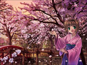 Rating: Safe Score: 24 Tags: card_captor_sakura japanese_clothes kinomoto_sakura moonknives yukata User: 秀悟