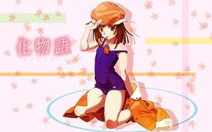 Rating: Safe Score: 37 Tags: bakemonogatari monogatari_(series) school_swimsuit sengoku_nadeko swimsuit User: rargy