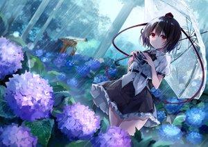Rating: Safe Score: 66 Tags: black_hair camera flowers kisaragi_yuri rain red_eyes shameimaru_aya short_hair torii touhou umbrella water User: RyuZU
