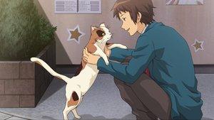 Rating: Safe Score: 46 Tags: all_male animal brown_eyes brown_hair cat game_cg kyon male suzumiya_haruhi_no_tsuisou suzumiya_haruhi_no_yuutsu User: SciFi
