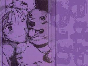 Rating: Safe Score: 8 Tags: animal cowboy_bebop dog edward_wong_hau_pepelu_tivrusky_iv ein_(cowboy_bebop) goggles monochrome short_hair watermark User: Oyashiro-sama