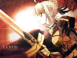Rating: Safe Score: 31 Tags: artoria_pendragon_(all) fate_(series) fate/stay_night saber User: Oyashiro-sama