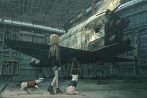 Rating: Safe Score: 26 Tags: aircraft animal brown_hair dog original short_hair shorts tokunaga_akimasa User: RyuZU