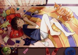 Rating: Safe Score: 98 Tags: animal cat original shibashino User: mikuna
