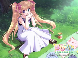 Rating: Safe Score: 20 Tags: bicolored_eyes blonde_hair dress hoshiful hoshikawa_ruka ikegami_akane twintails User: Oyashiro-sama