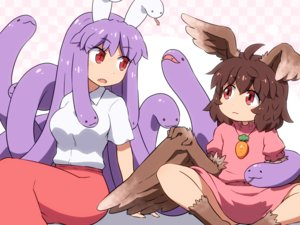 Rating: Safe Score: 27 Tags: 2girls animal brown_hair dress fang inaba_tewi long_hair necklace purple_hair red_eyes reisen_udongein_inaba shirosato short_hair skirt snake touhou wings User: otaku_emmy