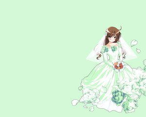 Rating: Safe Score: 16 Tags: green rozen_maiden suiseiseki wedding_attire User: Oyashiro-sama