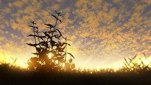 Rating: Safe Score: 32 Tags: clouds landscape mclelun nobody original scenic sky sunset watermark User: RyuZU