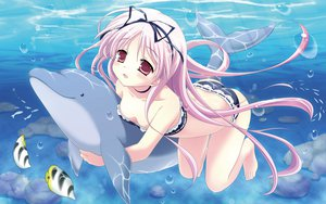 Rating: Safe Score: 174 Tags: animal barefoot bikini dolphin fish garden_(galge) pink_hair swimsuit water yuyi User: opai