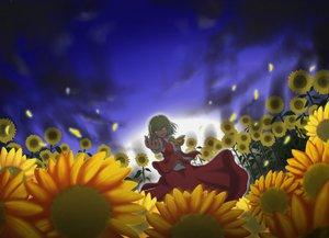 Rating: Safe Score: 22 Tags: flowers green_hair kazami_yuuka red_eyes short_hair skirt sky sunflower touhou User: Tensa