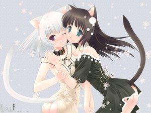 Rating: Safe Score: 70 Tags: animal_ears ass black_hair blue_eyes catgirl collar purple_eyes ribbons snow tail touto_seiro white_hair User: Oyashiro-sama