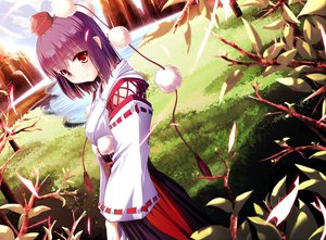 Rating: Safe Score: 146 Tags: grass japanese_clothes miko purple_hair red_eyes shameimaru_aya short_hair touhou water windfeathers User: opai