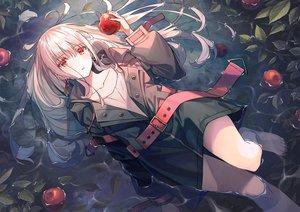 Rating: Safe Score: 72 Tags: apple blush food fruit gray_hair hoodie koh_rd long_hair original red_eyes water User: RyuZU