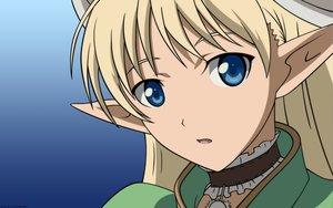 Rating: Safe Score: 4 Tags: elwing pointed_ears shining_tears vector User: Oyashiro-sama