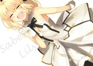 Rating: Safe Score: 54 Tags: artoria_pendragon_(all) fate/grand_order fate_(series) fate/stay_night fate/unlimited_codes saber saber_lily shiime User: FormX