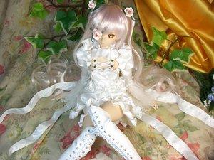 Rating: Safe Score: 120 Tags: doll figure flowers goth-loli kirakishou leaves lolita_fashion photo realistic rose rozen_maiden User: gnarf1975