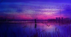 Rating: Safe Score: 48 Tags: animal bird building city clouds grass instrument long_hair original polychromatic scenic signed sky skyrick9413 violin water User: mattiasc02