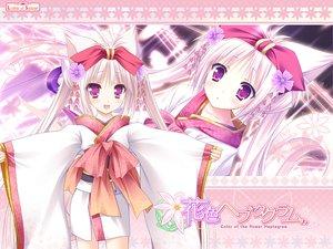 Rating: Safe Score: 85 Tags: animal_ears foxgirl hanairo_heptagram japanese_clothes kimono loli long_hair lump_of_sugar miyuri moekibara_fumitake tail User: Wiresetc