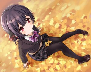 Rating: Safe Score: 49 Tags: autumn black_hair blush eluthel idolmaster idolmaster_shiny_colors leaves morino_rinze pantyhose red_eyes school_uniform short_hair skirt User: RyuZU