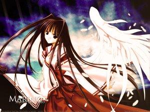 Rating: Safe Score: 21 Tags: angel_dust japanese_clothes miko nanase_aoi wings User: Oyashiro-sama