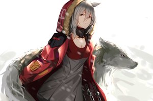 Rating: Safe Score: 135 Tags: animal animal_ears arknights breasts cleavage dress gray_hair higandgk hoodie knife projekt_red_(arknights) short_hair weapon white wolf wolfgirl yellow_eyes User: ssagwp