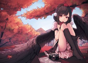 Rating: Safe Score: 308 Tags: autumn black_hair camera hat junwool leaves paper red_eyes shameimaru_aya short_hair skirt thighhighs touhou tree wings User: RyuZU