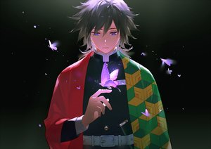 Rating: Safe Score: 35 Tags: all_male black black_hair blue_eyes butterfly gradient japanese_clothes kimetsu_no_yaiba male maosen tomioka_giyuu uniform User: RyuZU