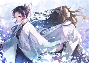 Rating: Safe Score: 12 Tags: 2girls black_hair cape ittetsu_taro japanese_clothes kimetsu_no_yaiba kimono kochou_kanae kochou_shinobu long_hair purple_eyes short_hair uniform User: otaku_emmy