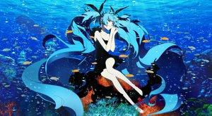 Rating: Safe Score: 171 Tags: animal aqua_eyes aqua_hair barefoot bubbles deep-sea_girl_(vocaloid) dress fish haruyo_(imokenp) hatsune_miku long_hair twintails underwater vocaloid water User: Neutral