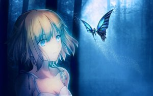 Rating: Safe Score: 188 Tags: butterfly short_hair takeuchi_takashi third-party_edit tsuki_no_sango type-moon User: Precursor