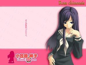 Rating: Safe Score: 2 Tags: maria-sama_ga_miteru ogasawara_sachiko pink User: Oyashiro-sama