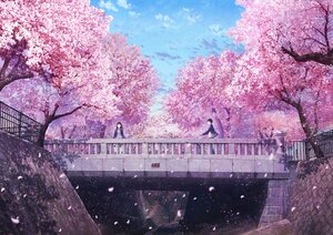 Rating: Safe Score: 42 Tags: anyotete bicycle cherry_blossoms flowers male original petals pink scenic school_uniform spring tree User: FormX