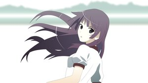 Rating: Safe Score: 16 Tags: bakemonogatari monogatari_(series) senjougahara_hitagi User: 秀悟