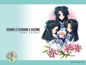 Rating: Safe Score: 8 Tags: black_hair blue_eyes carnelian flowers suzume touka_gettan User: Oyashiro-sama