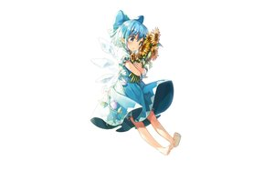 Rating: Safe Score: 60 Tags: aqua_eyes aqua_hair barefoot cirno dress fairy flowers pointed_ears shinoba short_hair sunflower touhou white wings User: RyuZU