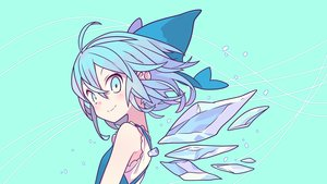 Rating: Safe Score: 74 Tags: cirno fairy morino_hon touhou vector wings User: RyuZU