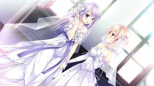Rating: Safe Score: 45 Tags: blush ensemble_(company) flowers game_cg long_hair male mutou_kurihito necklace otome_ga_musubu_tsukiyo_no_kirameki purple_eyes purple_hair reizei_shizune sesena_yau trap wedding wedding_attire yuuki_touya User: FormX
