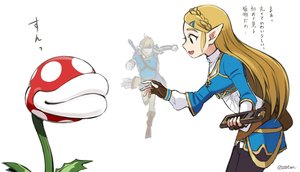 Rating: Safe Score: 33 Tags: black_eyes blonde_hair boots braids computer gloves link_(zelda) long_hair male otton piranha_plant pointed_ears princess_zelda signed super_mario super_mario_bros sword the_legend_of_zelda weapon white User: otaku_emmy