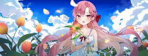 Rating: Safe Score: 47 Tags: blush braids cheli_(kso1564) clouds flowers long_hair purple_hair sky yun_rijeu User: BattlequeenYume