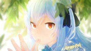 Rating: Safe Score: 48 Tags: anchovy_(artist) aqua_hair bow close closers long_hair orange_eyes tina_(closers) User: RyuZU