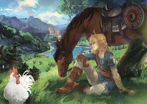 Rating: Safe Score: 25 Tags: all_male animal aqua_eyes bird blonde_hair boots building epona gloves grass horse landscape link_(zelda) male pointed_ears ponytail ram_(moekki) scenic the_legend_of_zelda tree User: otaku_emmy