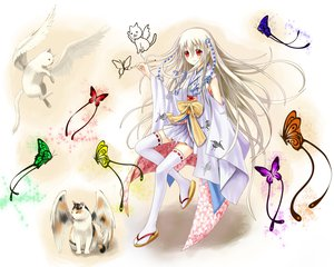 Rating: Safe Score: 44 Tags: animal butterfly cat dress japanese_clothes original red_eyes setona_(daice) thighhighs white_hair wings User: HawthorneKitty