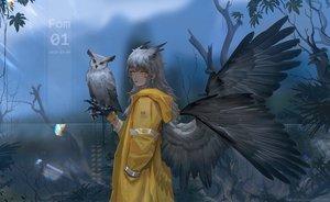 Rating: Safe Score: 53 Tags: animal bird fom_(lifotai) gray_hair hoodie long_hair original owl watermark wings yellow_eyes User: Fepple