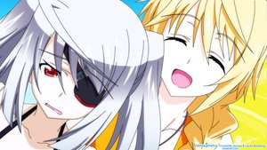 Rating: Safe Score: 64 Tags: blonde_hair charlotte_dunois eyepatch gray_hair infinite_stratos laura_bodewig red_eyes User: meccrain