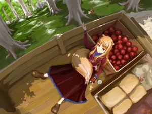 Rating: Safe Score: 107 Tags: animal_ears apple chitose_shuusui dress food forest fruit horo long_hair ookami_to_koushinryou orange_hair red_eyes tail tree wolfgirl User: rargy
