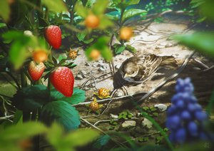 Rating: Safe Score: 55 Tags: animal bird food fruit leaves mocha_(cotton) nobody original realistic scenic signed strawberry User: otaku_emmy