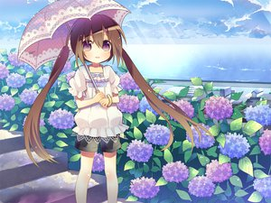 Rating: Safe Score: 80 Tags: brown_hair flowers loli original purple_eyes sie-sie twintails umbrella User: opai